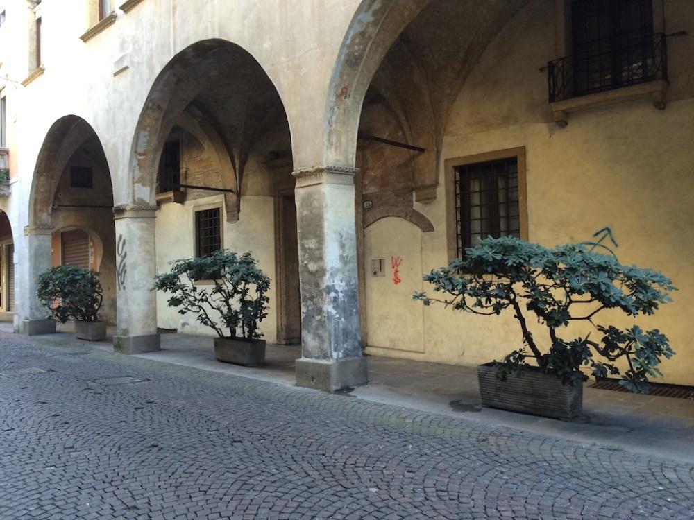 Padova 6