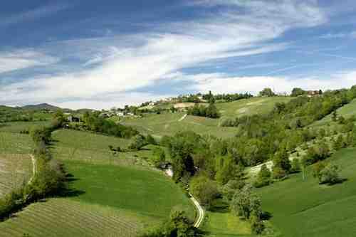Torrechiara view
