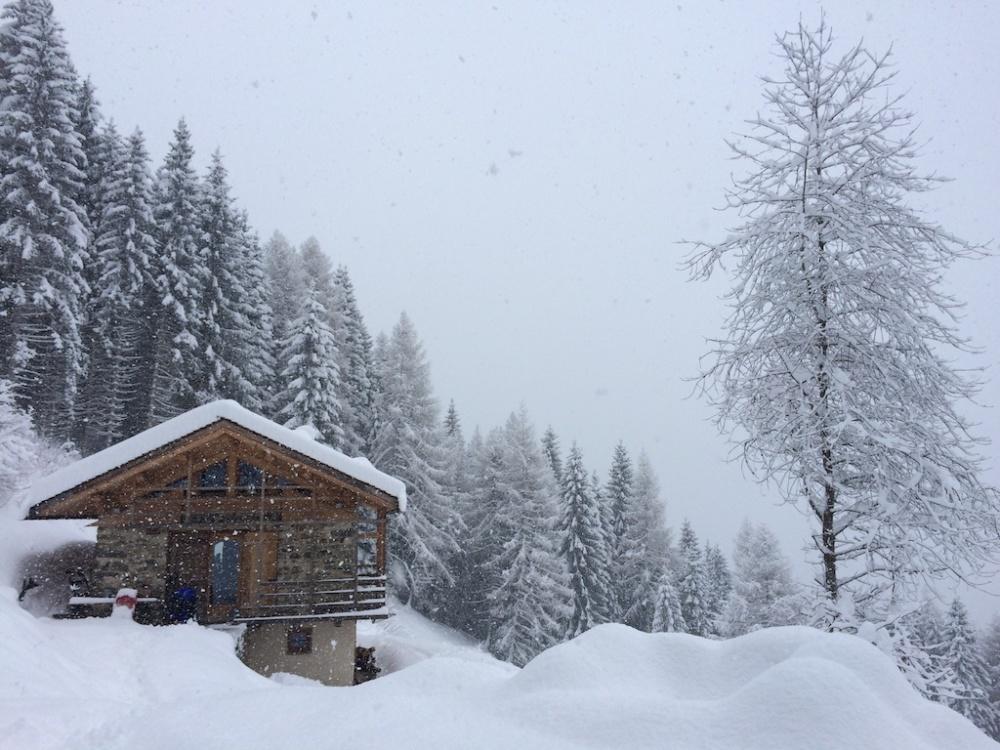 Trentino 15
