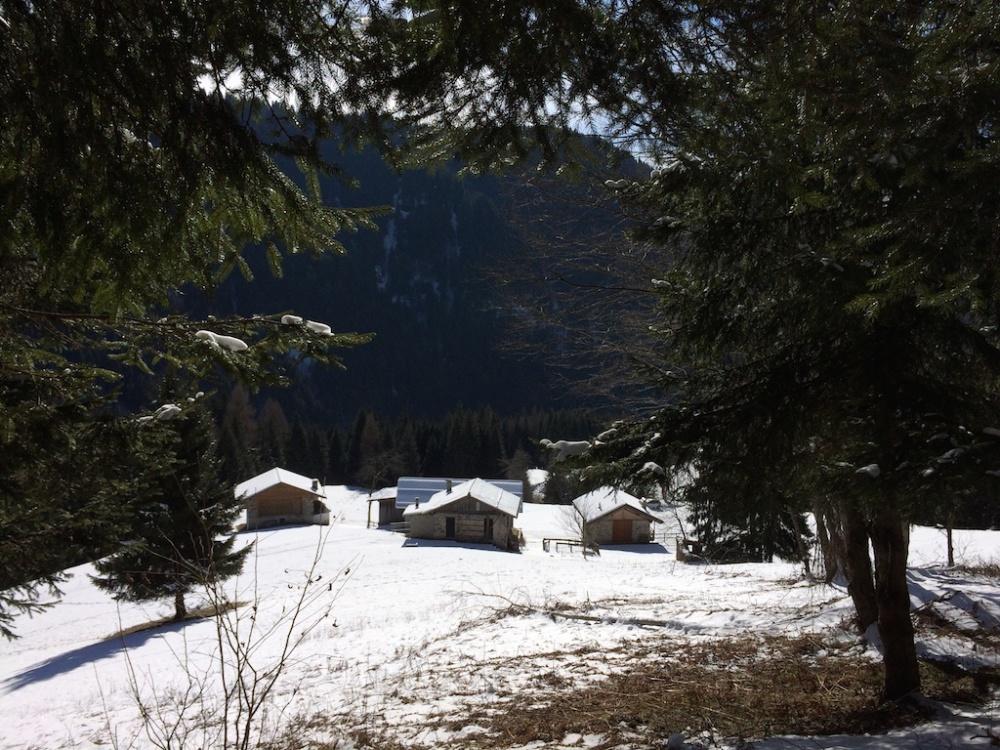 Trentino 3