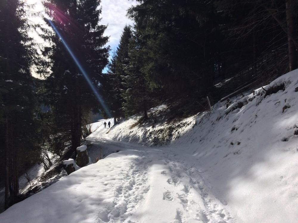 Trentino 4