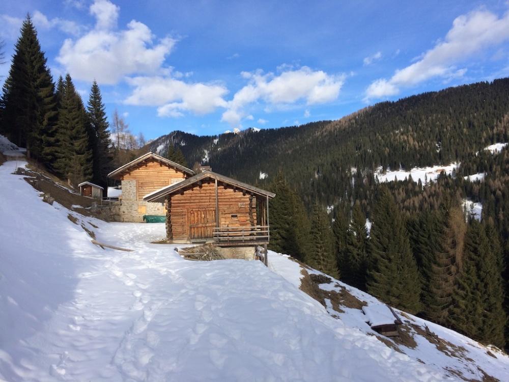 Trentino 7