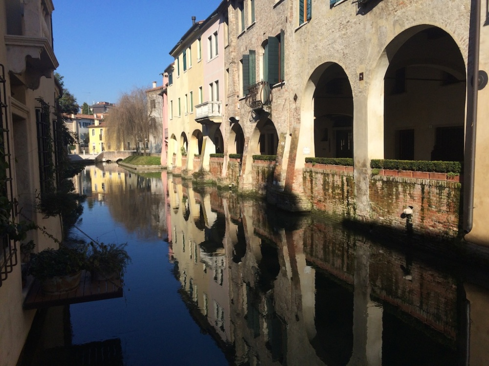 Treviso 7