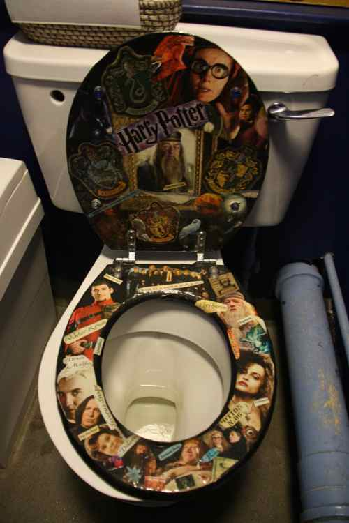 Harry Potter's magical fan toilet